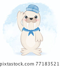 Cute walrus sailor cartoon arctic animal watercolor illustration 77183521