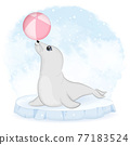 Cute baby seal and ball on ice floe cartoon animal watercolor illustration 77183524