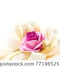 Rose and ribbon 77196525