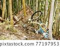 trash and abandoned bikes 77197953
