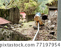 means of transport found in an abandoned town in Japan 77197954