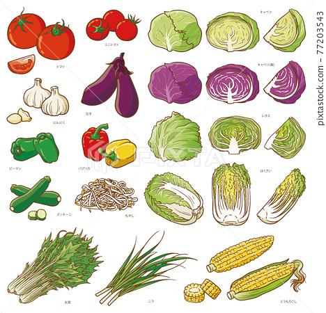 Vegetable set 2 77203543