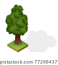 Set of various type wood isolated on white background. Green plant for isometric landscape public park or garden. Landscape constructor element. Vector icon for infographics or game 77206437