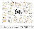 Draw vector illustration character collection cute cat. Doodle cartoon style. 77206617