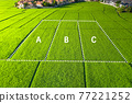 Plot of land lot for sale and investment in aerial view. 77221252