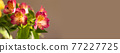 Beautiful spring flowers on beige background with copy space. Flat lay ,top view. 77227725