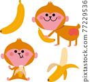 香蕉 猴子 猴 77229536