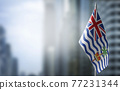 A small flag of British Indian Ocean Territory on the background of a blurred background 77231344