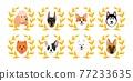 Dogs winner avatars 77233635