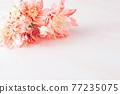 핑크 꽃 프레임 77235075