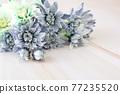 푸른 꽃 프레임 77235520