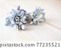 푸른 꽃 프레임 77235521