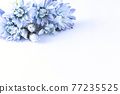 푸른 꽃 프레임 77235525