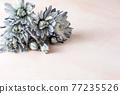 푸른 꽃 프레임 77235526