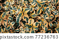 Green and yellow leaves pattern nature background 77236763