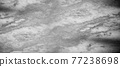 gray marble natural stone background 77238698