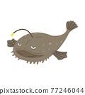 美洲鮟鱇 魚 深海魚類 77246044
