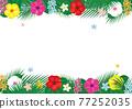 花朵 花 花卉 77252035