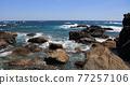 從室戶角(Cape Muroto)的尖坎加哈馬(Kanjogahama)欣賞太平洋 77257106
