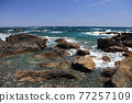 從室戶角(Cape Muroto)的尖坎加哈馬(Kanjogahama)欣賞太平洋 77257109