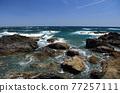 從室戶角(Cape Muroto)的尖坎加哈馬(Kanjogahama)欣賞太平洋 77257111