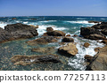 從室戶角(Cape Muroto)的尖坎加哈馬(Kanjogahama)欣賞太平洋 77257113