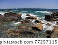 從室戶角(Cape Muroto)的尖坎加哈馬(Kanjogahama)欣賞太平洋 77257115