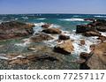 從室戶角(Cape Muroto)的尖坎加哈馬(Kanjogahama)欣賞太平洋 77257117