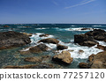 從室戶角(Cape Muroto)的尖坎加哈馬(Kanjogahama)欣賞太平洋 77257120