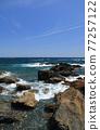 從室戶角(Cape Muroto)的尖坎加哈馬(Kanjogahama)欣賞太平洋 77257122