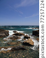 從室戶角(Cape Muroto)的尖坎加哈馬(Kanjogahama)欣賞太平洋 77257124