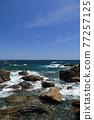 從室戶角(Cape Muroto)的尖坎加哈馬(Kanjogahama)欣賞太平洋 77257125