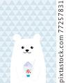 冰 刨冰 北極熊 77257831