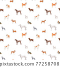 Beautiful seamless pattern with cute watercolor hand drawn dog breeds Cocker spaniel Greyhound Hound Basenji and Russian Greyhound Whippet . Stock illustration. 77258708