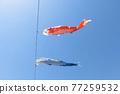 blue sky, carp streamer, japanese carp-shaped windsock 77259532
