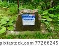 北海道 花莖 簽字 77266245