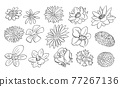 Flowers Set, Sketchy Cartoon Hand Drawing, Black and White 77267136