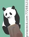 熊貓 煙蒂 矢量 77268121