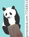熊貓 煙蒂 矢量 77268513