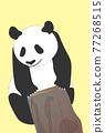 熊貓 煙蒂 矢量 77268515