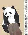 熊貓 煙蒂 矢量 77268516