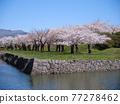 고료 카쿠 공원 77278462