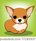 Cute Cartoon Vector Illustration of a Chihuahua  puppy dog 77283937