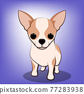 Cute Cartoon Vector Illustration of a Chihuahua  puppy dog 77283938