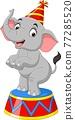 Cartoon funny circus elephant standing 77285520
