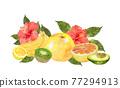 水彩畫 水果 夏天 77294913