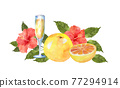 水彩畫 水彩 水果 77294914