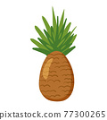 Pineapple tropical fruit, healthy nutrition product. Vector cartoon flat illustration hand drawn isolated 77300265
