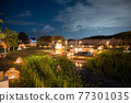 lake biwa, lit up, light up 77301035