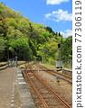 翠綠 鮮綠 鐵路 77306119